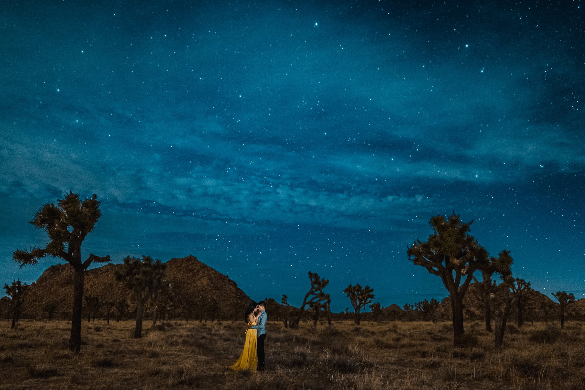 Night Engagement Session In Joshua Tree National Park